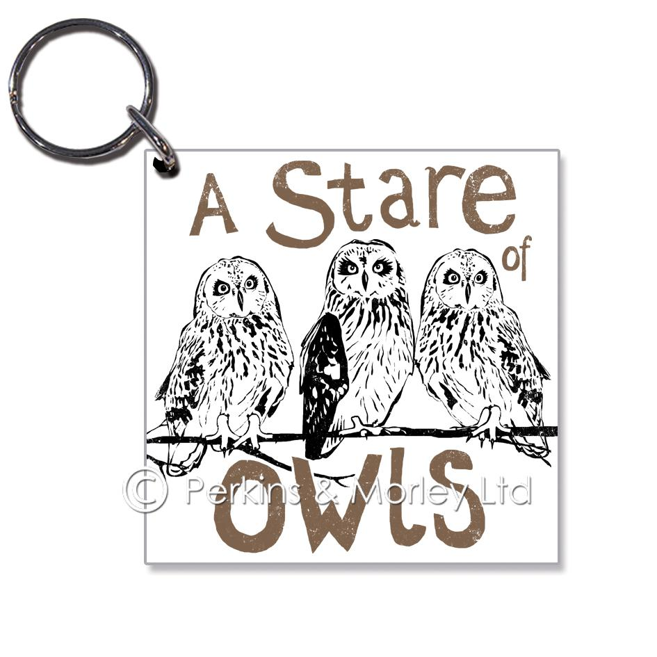 J2CN42K-stare-of-owls-mock-up