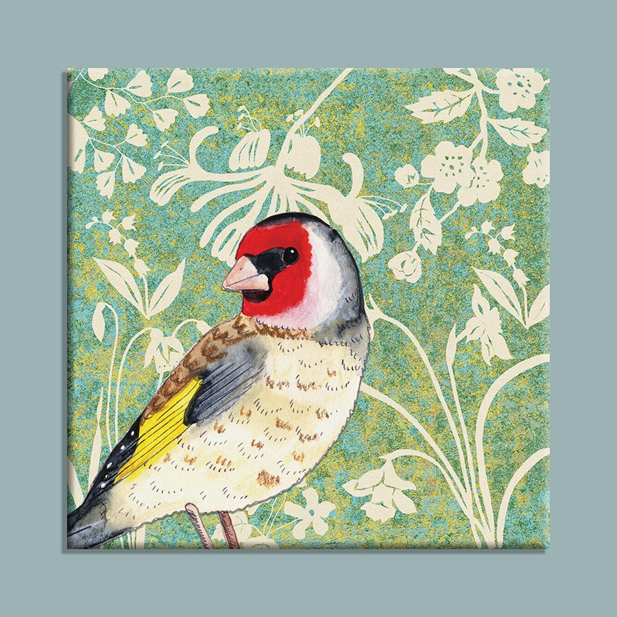 J2WW15CP-Goldfinch-canvas-on-colour-web