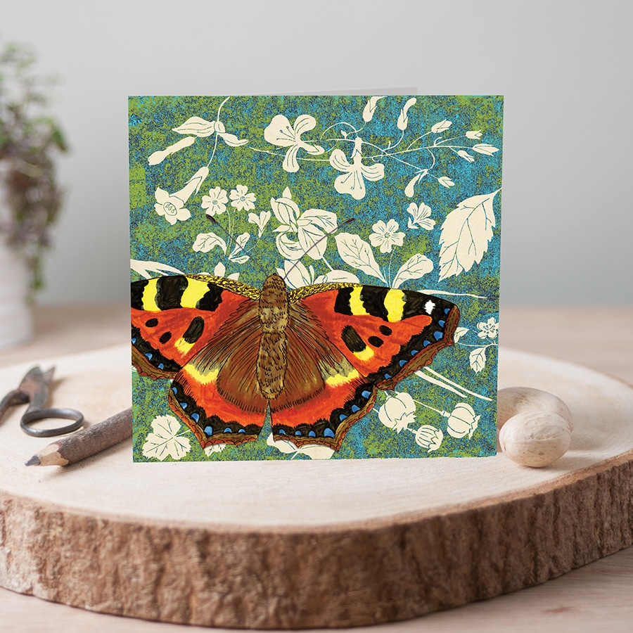 J2WW30-Tortoiseshell-butterfly-card-photo-square-web
